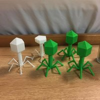 Small Bacteriophage 3D Printing 144929