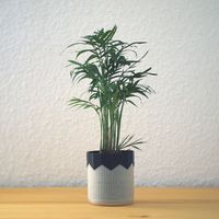 Small Composite planter 3D Printing 148304