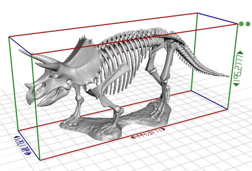 3d Printed Triceratops Prorsus Skeleton By Rowiac Pinshape