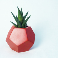 Small Dodecaedro planter 3D Printing 148756