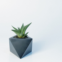 Small Octaedro planter 3D Printing 148761