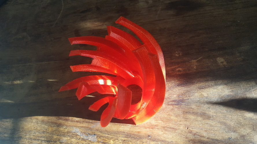 Wild Reflection Lamp 3D Print 149078