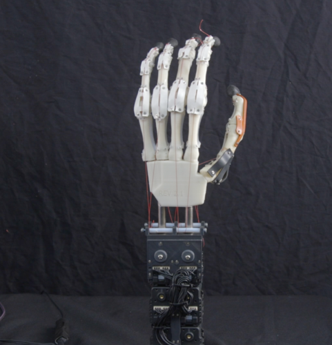 3D Printed Biomimetic Robotic Prosthetic Hand By Grayson G