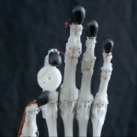 Small Biomimetic Robotic Prosthetic Hand 3D Printing 149829