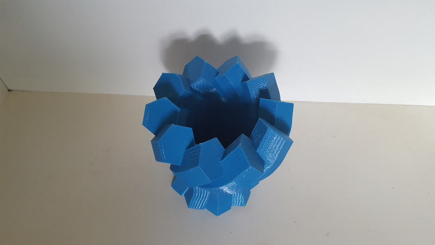 Twisted Hexagon Vase 3D Print 149966