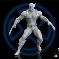 Small X-MEN Diorama - Wolverine / 3D model for 3D Printing  3D Printing 150396