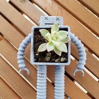 Small Robot Planter 3D Printing 150812