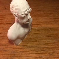 Small Leon the professional statue bust 3D Printing 151701