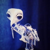 Small Animatronic Bird Armature (head sold separatly) 3D Printing 153820