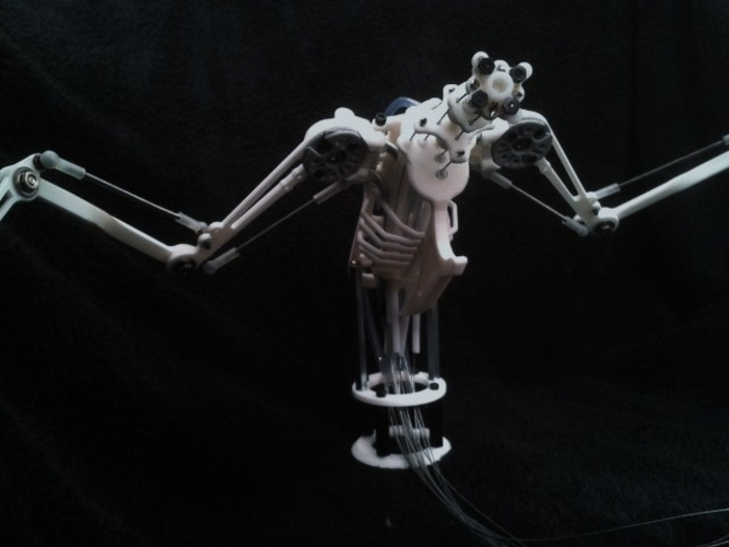 Animatronic Bird Armature (head sold separatly) 3D Print 153822