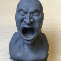 Small Scream 3D Printing 155992