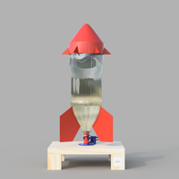 Small Water Bottle Rocket 3D Printing 156929