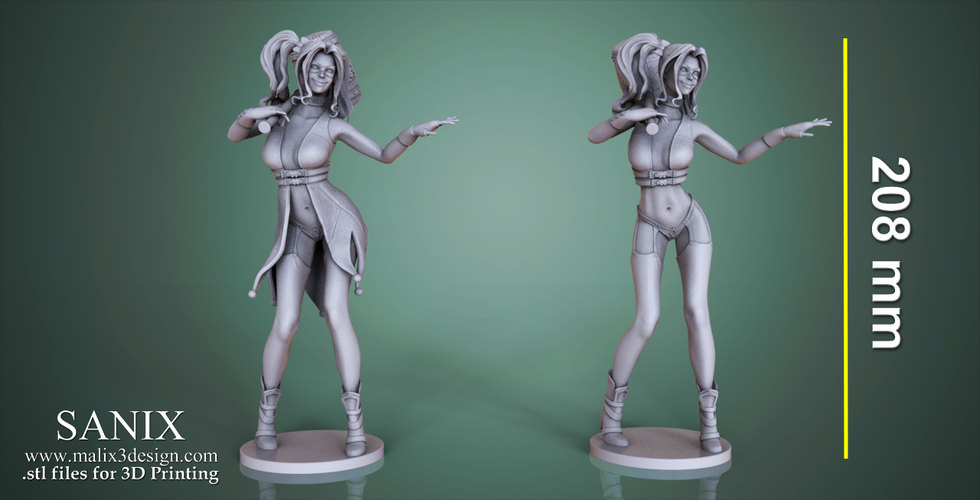 Harley Quinn - 3D Model for 3D Printing 3D Print 157005