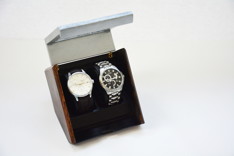Watch Case - 3D Printing Build 3D Print 157304