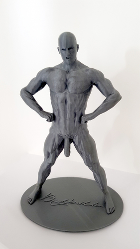Naked Bodybuilder Statue with penis 3D Print 157756