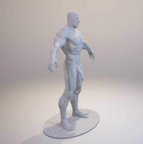 Naked Bodybuilder 2  Statue with penis 3D Print 157852