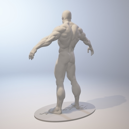 Naked Bodybuilder 2  Statue with penis 3D Print 157853