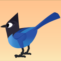 Small Steller's Jay 3D Printing 160110