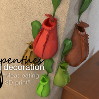 Small Nepenthes wall decoration 3D Printing 16361