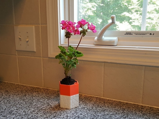 Self-watering Planter 3 3D Print 165120