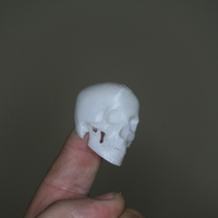 Small Fingerspop  3D Printing 166432