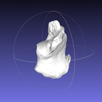 Small High resolution Human Calcaneus (Heel Bone) Scan 3D Printing 166735