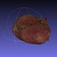 Small Potato Scan with NextEngine Scanner - Fruits and Vegetables 3D Printing 166747