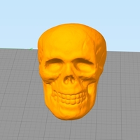 Small Small Halloween Skull Toy 3D Printing 166782