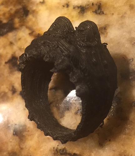 Monster_Ring 3D Print 167985