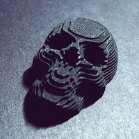Small Topographic Skull 3D Printing 169139