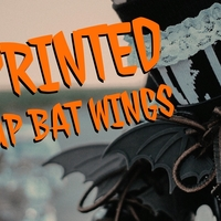 Small Lace Up Bat Wings 3D Printing 171477