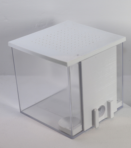 Standard Arena for our modular formicarium / ant farm 3D Print 174461