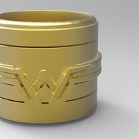 Small Wonder Woman Container 3D Printing 175627