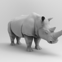 Small Rhinoceros 3D Printing 175732