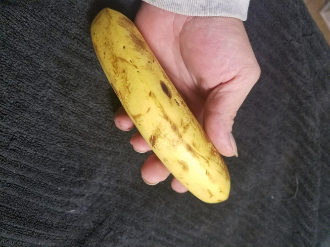 High Resolution Scan of a Banana. Yes, a Banana. 3D Print 179245