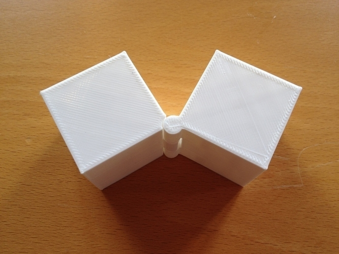 Two Hinged Boxes 3D Print 180023