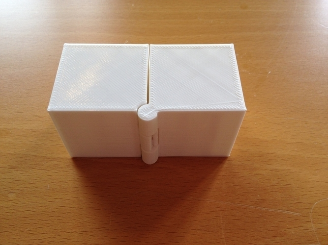 Two Hinged Boxes 3D Print 180026