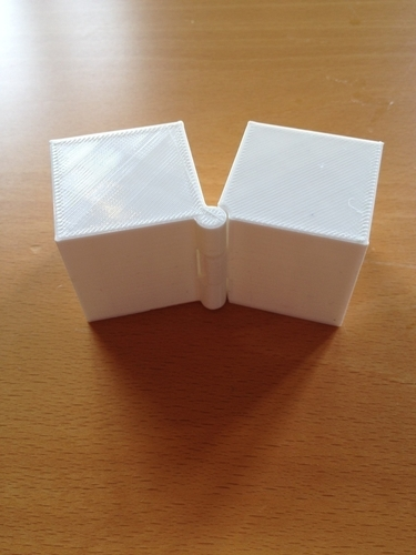 Two Hinged Boxes 3D Print 180027