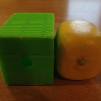 Small Squareish Lemon Mold 3D Printing 180056