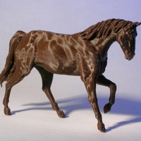 Small Anatomical Horse 3D Printing 180295