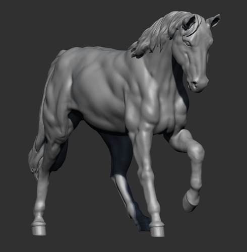 Anatomical Horse 3D Print 180335