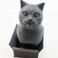 Small Schrodinky! British Shorthair Cat Sitting In A Box 3D Printing 180413