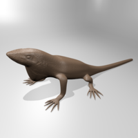 Small Anole lizard 3D Printing 181346