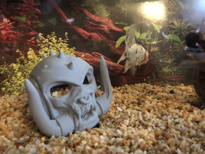 Motorhead's Snaggletooth Aquarium decor 3D Print 181386