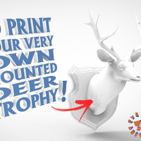 Small Wall Plaque Mounted Deer Head Trophy 3D Printing 182729