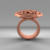 Small Ring Ornaments 3D Printing 18279