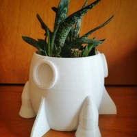 Small trio of small pots for succulents 3D Printing 183612