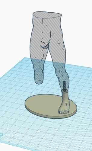 Transtibial (below-knee) limb loss/difference model for prosthet 3D Print 184390