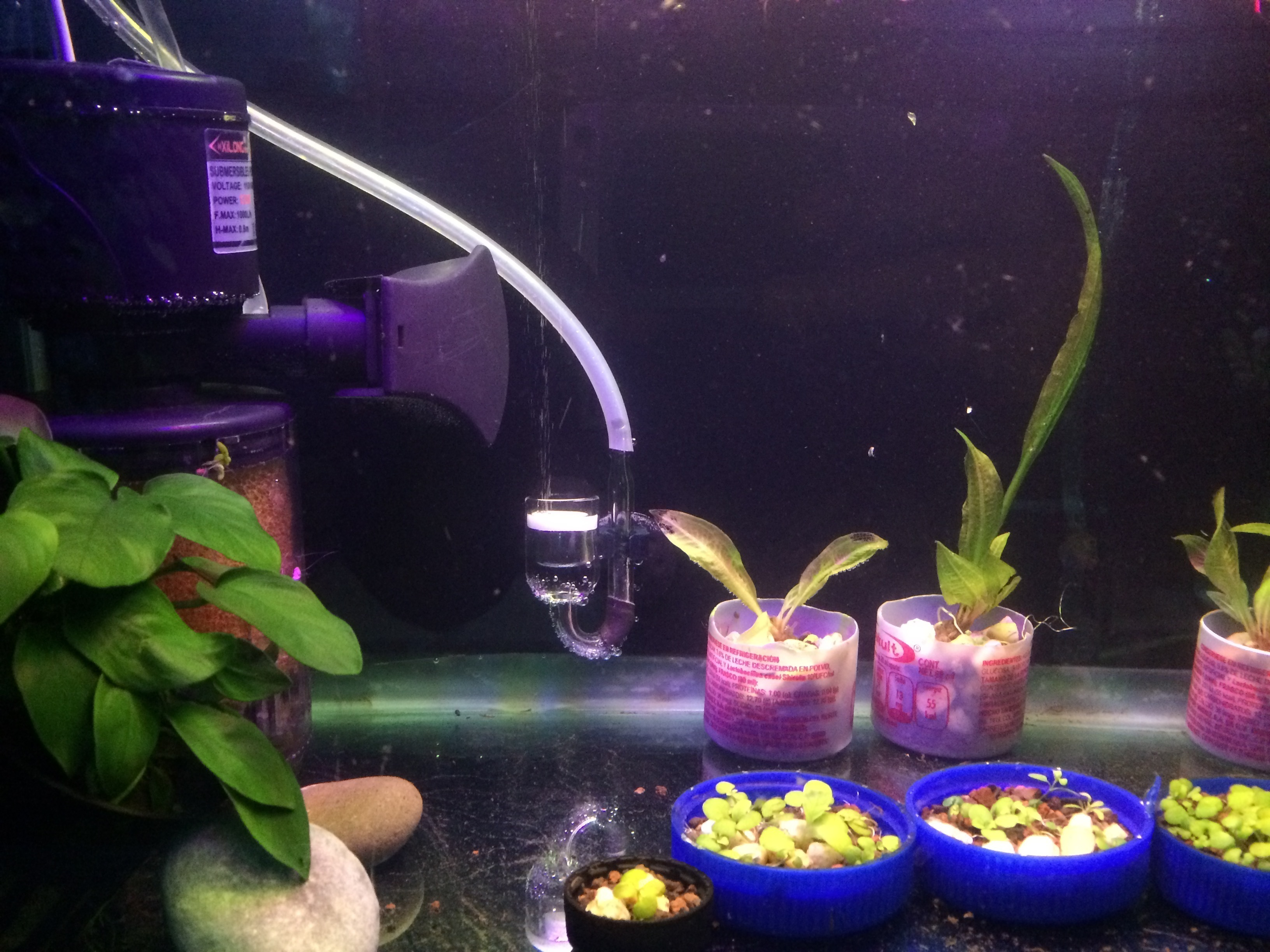 3D Printed Co2 diffuser holder for aquarium by japsol3d