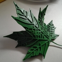 Small Maple Leaf  3D Printing 190632